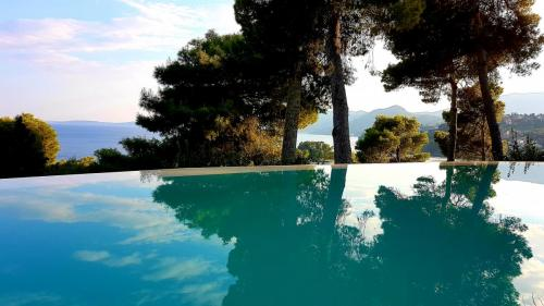 Pool Bungalow